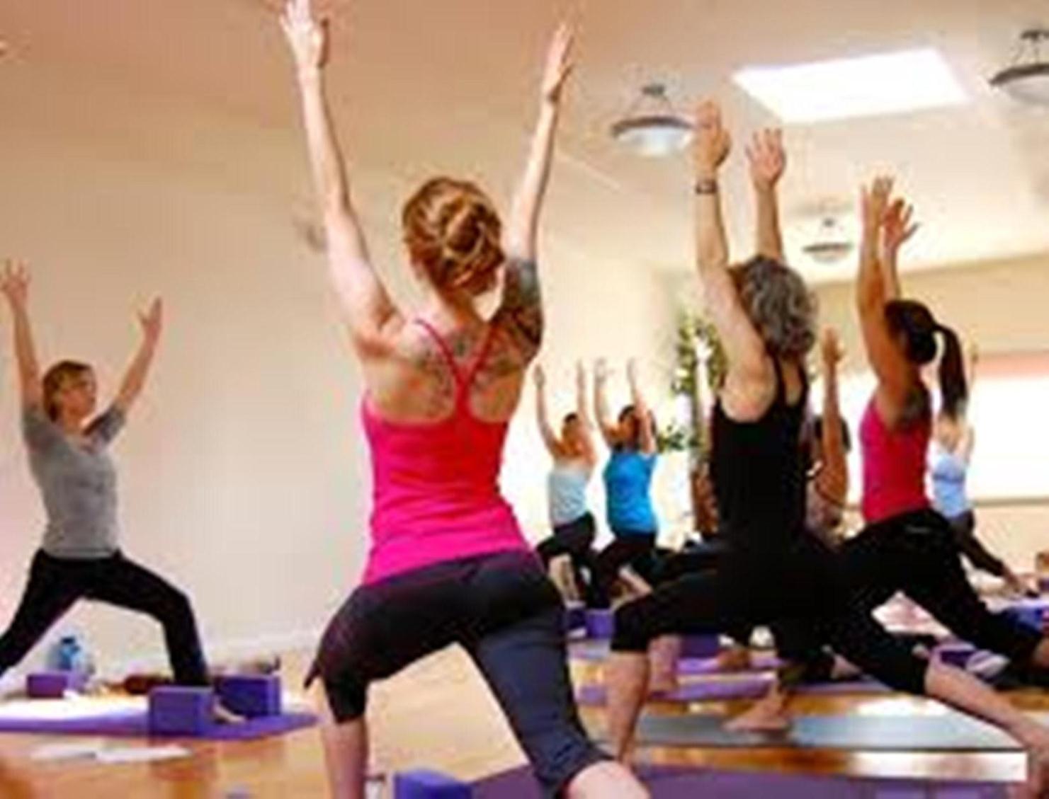 Yoga in Rishikesh | Yoga Teacher Training in Rishikesh